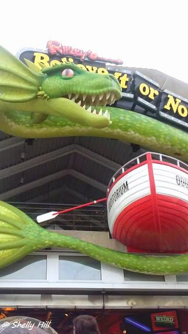 Ripley's Believe It or Not for the Weird, Wacky and Odd