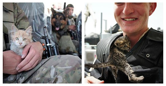 30 Soldiers Who Met Their Best Friends While Overseas