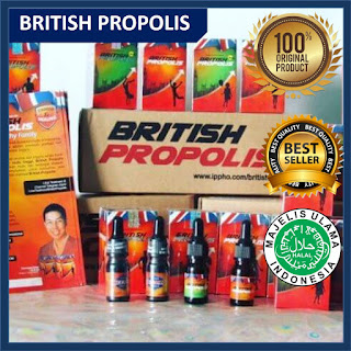 BRITISH PROPOLIS 100 % ORIGINAL|HERBAL DIABETES|HERBAL ASAM URAT|HERBAL KOLESTEROL|IPPHO SANTOSA