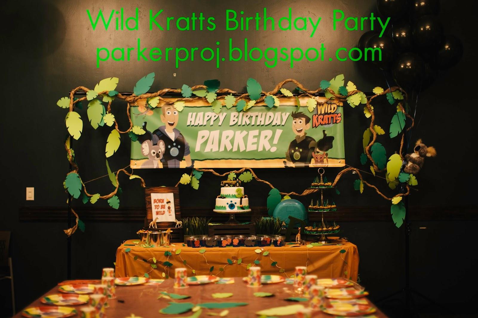 Wild Kratts Birthday Party At Nickel City San Diego