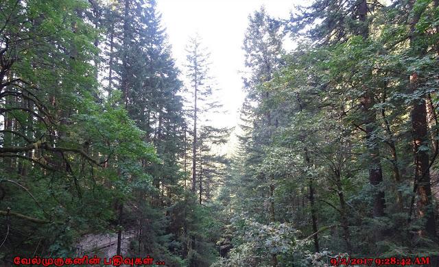 Washington Waterfalls Hike - Hardy Falls