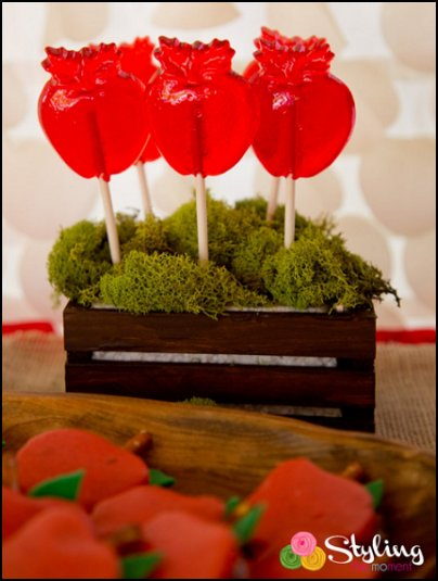 snow white party food APPLE LOLLIPOPS - Apple Party Favors, Snow White Themed Party