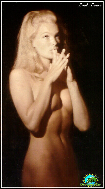Something is. naked pictures of linda evans think, that
