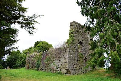 Saint Fintans Well, Cromogue, Laois.