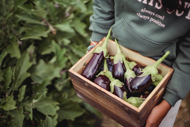 Why You Should Make More Eggplant Dishes During the Pandemic