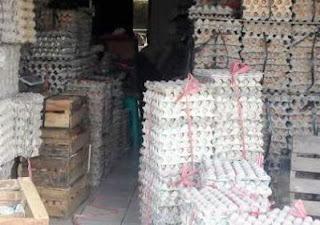 agen distributor telur Jaksel