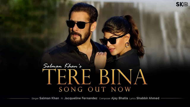 TERE BINA LYRICS - Salman  Khan | तेरे बिना - Jacqueline Fernandez