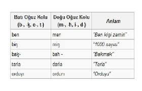 Azerbaycan Türkçesi ve Edebiyatı nedir