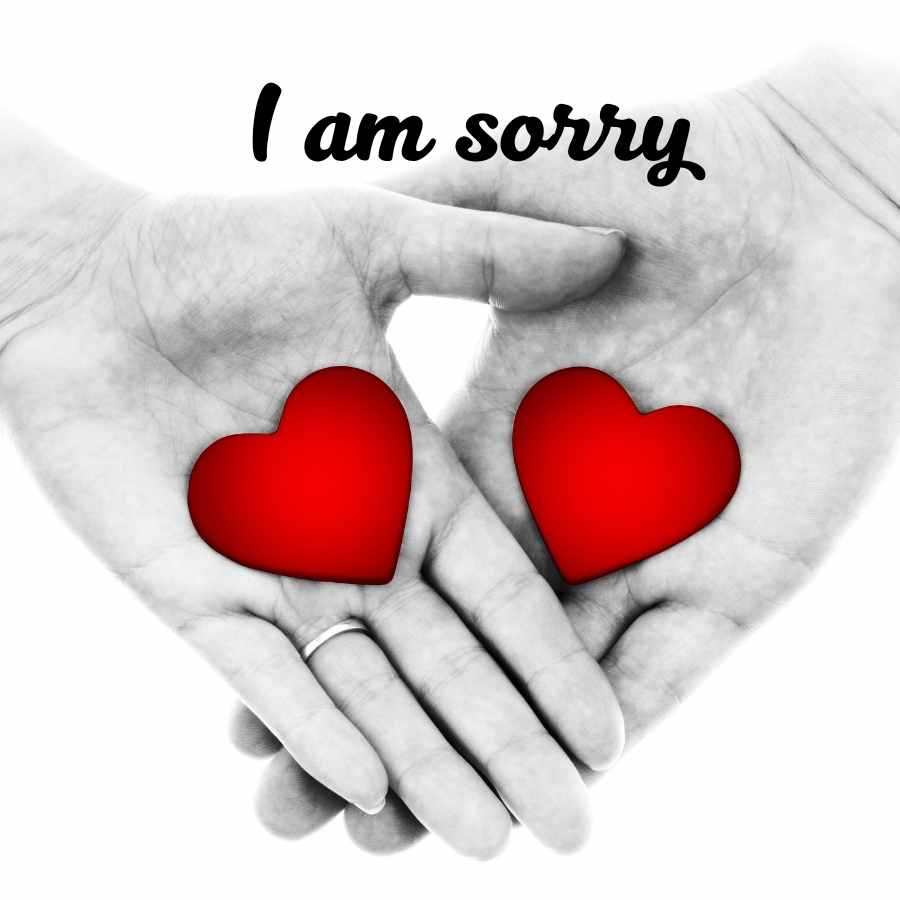 sorry quotes images