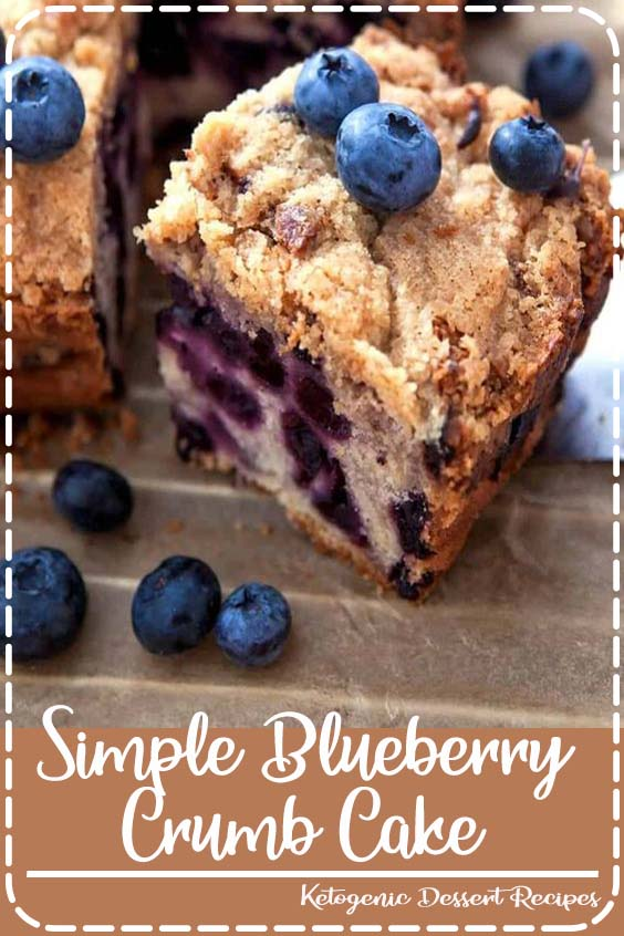 This simple blueberry crumb cake is moist Simple Blueberry Crumb Cake
