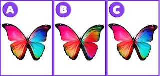 Spot the Difference Quiz Answers
