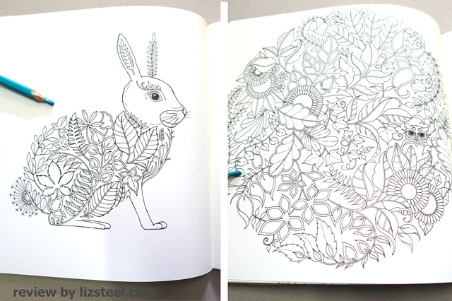 Adult Coloring Books 1 An Initial Review Liz Steel Liz Steel