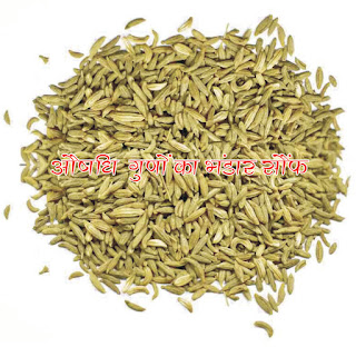 औषधीय गुणों का भंडार सौंफ hindi, Fennel has sufficient medicinal properties in hindi, Health benefits of aniseed in hindi, aushadhi guno ka bhandar saunf hindi, Aniseed is mostly used as a mouth freshener after meals, but fennel has many benefits in hindi, Fennel is a medicine and many things have been told about it in Ayurveda in hindi,fennel seeds benefits in hindi, fennel seeds benefits for skin in hindi, how to use fennel seeds for hair growth in hindi,saunf ke fayde hindi, saunf ke fayde for skin in hindi, khali pet sof khane ke fayde in hindi,sof khane ke fayde hindi mein, saunf image, saunf jpeg, saunf photo,saunf jpg, saunf pdf in hindi, saunf article in hindi, Fennel image, Fennel article in hindi, Fennel reduces weight in hindi, Fennel headache in hindi, For fennel eyes in hindi, Fennel cold in hindi,Fennel for mouth ulcers in hindi, Fennel relieve stomach ache in hindi, Fennel increases appetite in hindi, Fennel for breastfeeding in hindi, Fennel blood pressure control in hindi, Fennel for good sleep in hindi, Fennel should protect against diabetes in hindi, Fennel increases liver capacity in hindi, Fennel is beneficial in hindi, in preventing kidney stones in hindi, Fennel clears blood in hindi, For fennel skin in hindi, Look after fennel hair in hindi, क्यों सक्षमबनो इन हिन्दी में, क्यों सक्षमबनो अच्छा लगता है इन हिन्दी में?, कैसे सक्षमबनो इन हिन्दी में? सक्षमबनो ब्रांड से कैसे संपर्क करें इन हिन्दी में, सक्षमबनो हिन्दी में, सक्षमबनो इन हिन्दी में, सब सक्षमबनो हिन्दी में,अपने को सक्षमबनो हिन्दीं में, सक्षमबनो कर्तव्य हिन्दी में, सक्षमबनो भारत हिन्दी में, सक्षमबनो देश के लिए हिन्दी में,खुद सक्षमबनो हिन्दी में, पहले खुद सक्षमबनो हिन्दी में, एक कदम सक्षमबनो के ओर हिन्दी में, आज से ही सक्षमबनो हिन्दी हिन्दी में,सक्षमबनो के उपाय हिन्दी में, अपनों को भी सक्षमबनो का रास्ता दिखाओं हिन्दी में, सक्षमबनो का ज्ञान पाप्त करों हिन्दी में,सक्षमबनो-सक्षमबनो हिन्दी में, सक्षमबनो इन हिन्दी में, सक्षमबनो इन हिन्दी में, sakshambano ka matlab in hindi सक्षम hindi, sakshambano in hindi, sakshambano in eglish, sakshambano meaning in hindi, sakshambano in hindi, sakshambano ka matlab in hindi, sakshambano photo, sakshambano photo in hindi, sakshambano image in hindi, sakshambano image, sakshambano jpeg, sakshambano site in hindi, sakshambano wibsite in hindi, sakshambano website, sakshambano india in hindi, sakshambano desh in hindi, sakshambano ka mission hin hindi, sakshambano ka lakshya kya hai,  sakshambano ki pahchan in hindi,  sakshambano brand in hindi,  sakshambano company in hindi,  aaj hi sakshambano in hindi, phir se sakshambano in hindi, abhi se sakshambano in hindi, aap bhi sakshambano in hindi,