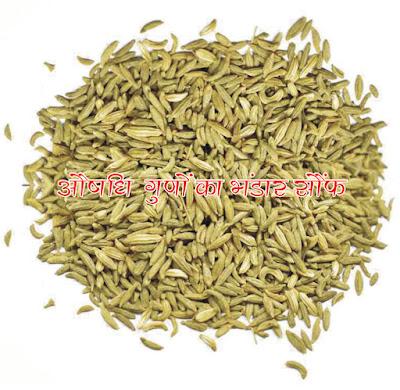 Fennel increases appetite in hindi, सौंफ भूख बढ़ाता है in hindi, सौंफ वात तथा पित्त को शांत करता है  in hindi, Fennel calms vata and pitta in hindi, सौंफ खाने के फायदे in hindi, Benefits of eating fennel in hindi, औषधीय गुणों का भंडार सौंफ hindi, Fennel has sufficient medicinal properties in hindi, Health benefits of aniseed in hindi, aushadhi guno ka bhandar saunf hindi, Aniseed is mostly used as a mouth freshener after meals, but fennel has many benefits in hindi, Fennel is a medicine and many things have been told about it in Ayurveda in hindi,fennel seeds benefits in hindi, fennel seeds benefits for skin in hindi, how to use fennel seeds for hair growth in hindi,saunf ke fayde hindi, saunf ke fayde for skin in hindi, khali pet sof khane ke fayde in hindi,sof khane ke fayde hindi mein, saunf image, saunf jpeg, saunf photo,saunf jpg, saunf pdf in hindi, saunf article in hindi, Fennel image, Fennel article in hindi, Fennel reduces weight in hindi, Fennel headache in hindi, For fennel eyes in hindi, Fennel cold in hindi,Fennel for mouth ulcers in hindi, Fennel relieve stomach ache in hindi, Fennel increases appetite in hindi, Fennel for breastfeeding in hindi, Fennel blood pressure control in hindi, Fennel for good sleep in hindi, Fennel should protect against diabetes in hindi, Fennel increases liver capacity in hindi, Fennel is beneficial in hindi, in preventing kidney stones in hindi, Fennel clears blood in hindi, For fennel skin in hindi, Look after fennel hair in hindi, क्यों सक्षमबनो इन हिन्दी में, क्यों सक्षमबनो अच्छा लगता है इन हिन्दी में?, कैसे सक्षमबनो इन हिन्दी में? सक्षमबनो ब्रांड से कैसे संपर्क करें इन हिन्दी में, सक्षमबनो हिन्दी में, सक्षमबनो इन हिन्दी में, सब सक्षमबनो हिन्दी में,अपने को सक्षमबनो हिन्दीं में, सक्षमबनो कर्तव्य हिन्दी में, सक्षमबनो भारत हिन्दी में, सक्षमबनो देश के लिए हिन्दी में,खुद सक्षमबनो हिन्दी में, पहले खुद सक्षमबनो हिन्दी में, एक कदम सक्षमबनो के ओर हिन्दी में, आज से ही सक्षमबनो हिन्दी हिन्दी में,सक्षमबनो के उपाय हिन्दी में, अपनों क