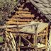 Снос самовольной постройки без разрешения на строительство