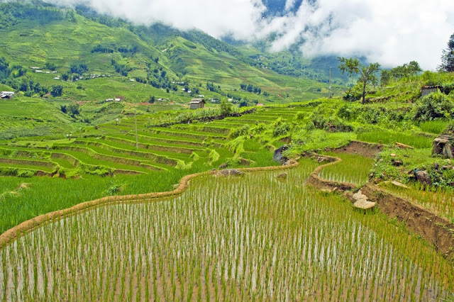 A Week In The North Of Vietnam With The Most Prominent Destinations 3