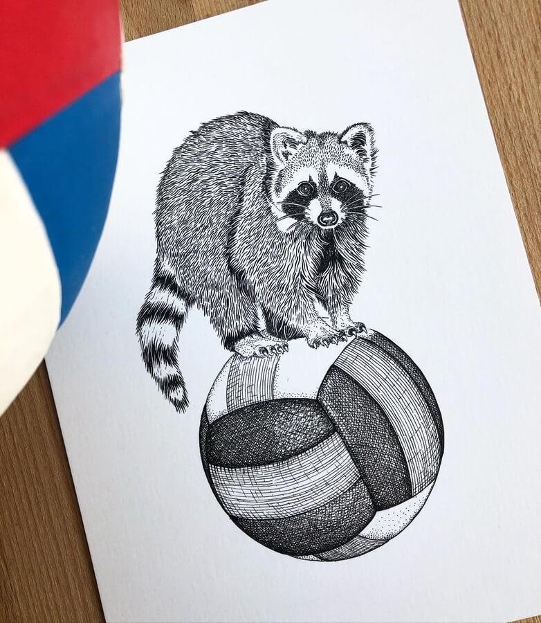 07-Raccoon-and-the-ball-Diane-Swartzberg-www-designstack-co