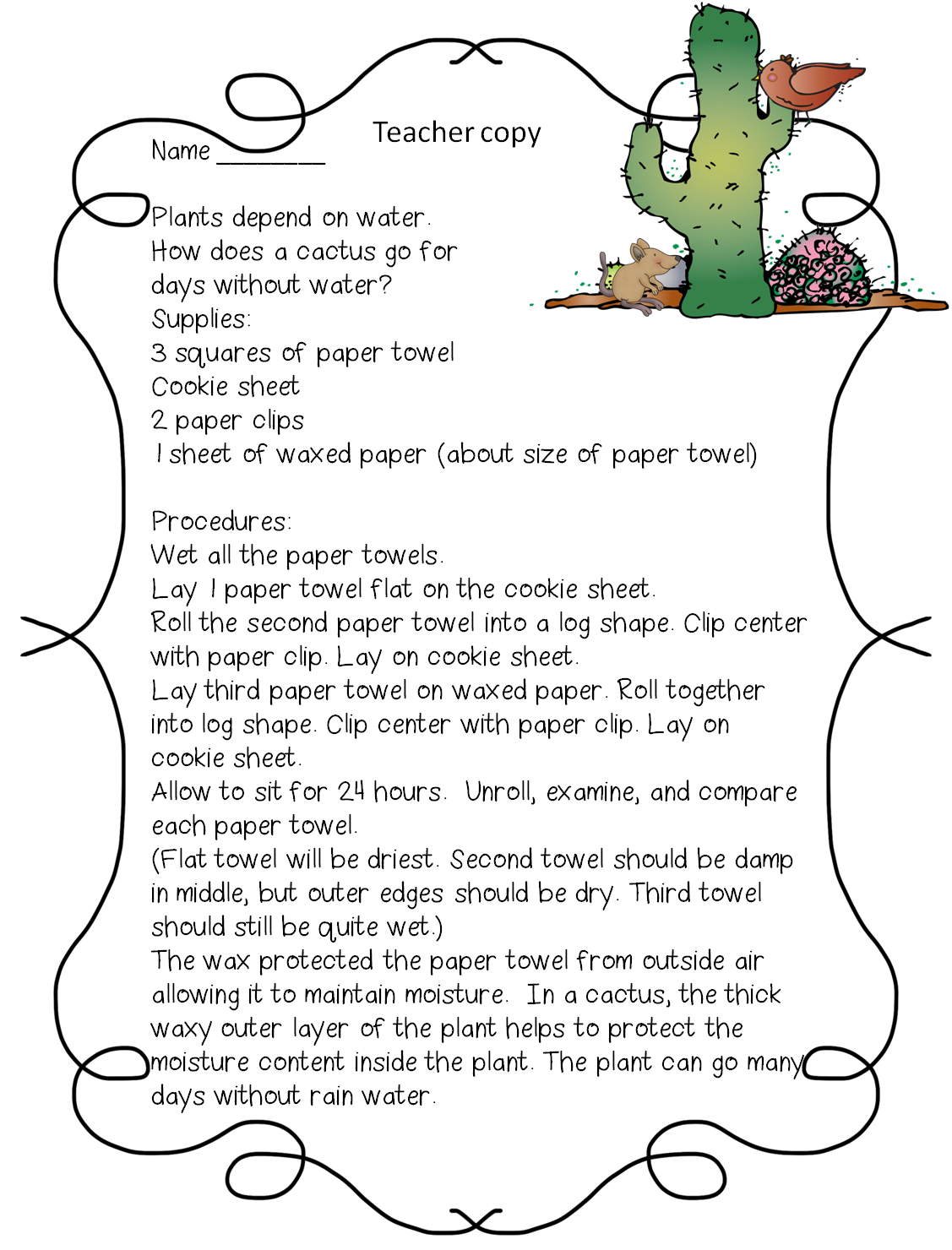 Cactus Worksheet