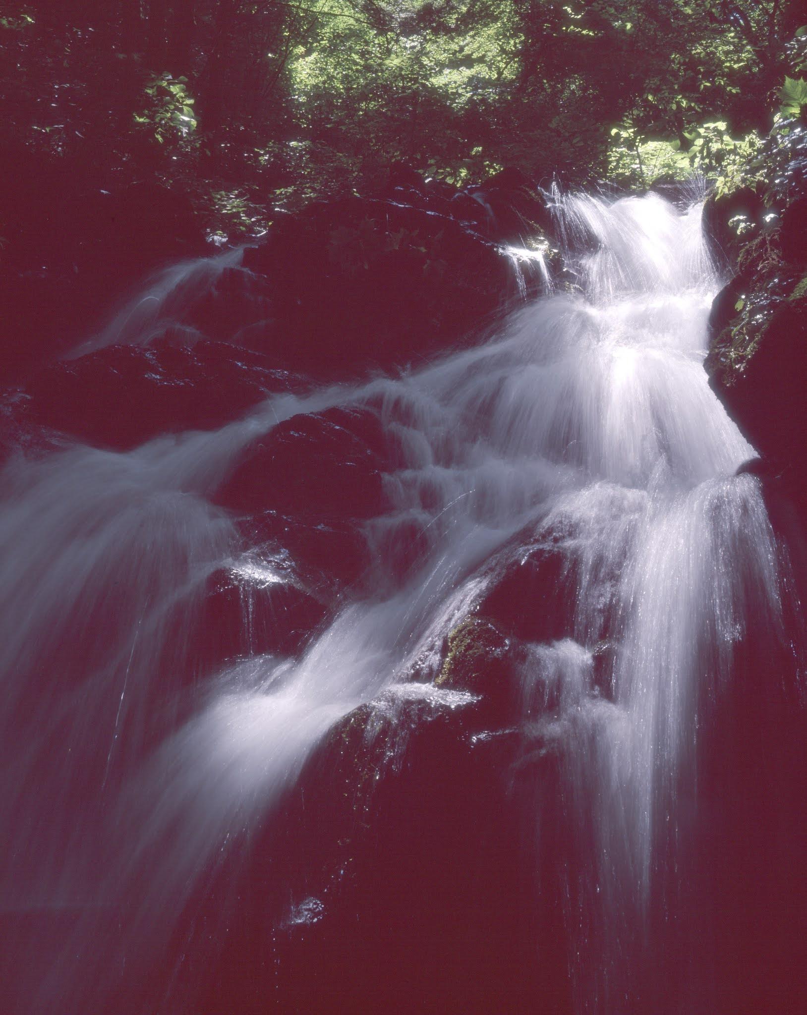 大判カメラ 滝