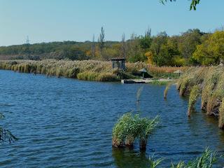 Река Сенная. Сенянское водохранилище. Пляж профилактория