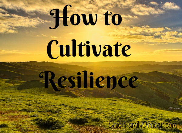 How to Cultivate Resilience