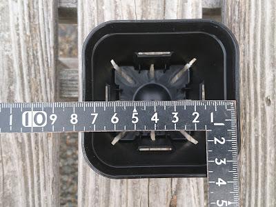 7.5センチ
