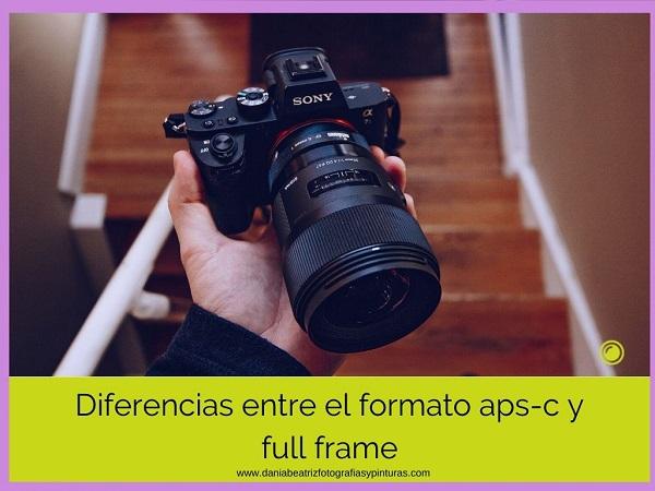 full-frame-vs-aps-c
