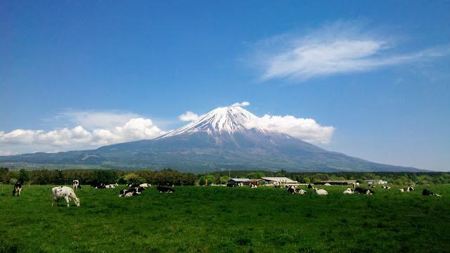 富士山駅から朝霧高原~白糸の滝~御殿場と富士山を2/3ほど周回するサイクリングコース