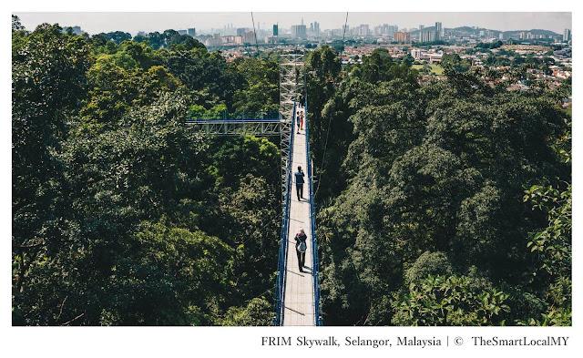 FRIM Skywalk Selangor Malaysia - Ramble and Wander