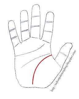 पूरी जीवन रेखा के आकार को देखते हुए कई बार यह अन्य रेखाओं की अपेक्षा अधिक मोटी होती है। इस प्रकार की जीवन रेखा हृदय मस्तिष्क व भाग्य रेखा की तुलना में गहरी व चौड़ी होती है।
