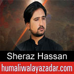 https://humaliwalaazadar.blogspot.com/2019/08/sheraz-hassan-nohay-2020.html