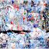 De afvalrace