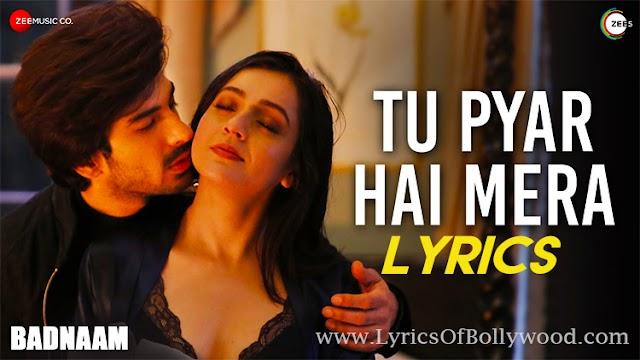 Tu Pyar Hai Mera Song Lyrics | Badnaam | Yasser Desai | Priyal Gor, Mohit Sehgal | Harish Sagane