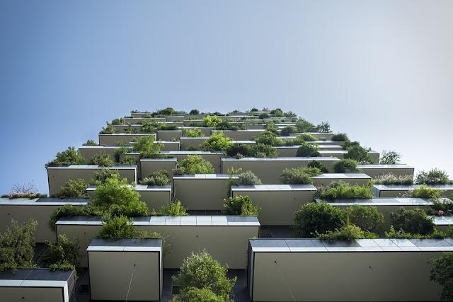 terrazzo-piante-bosco-verticale