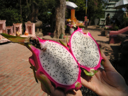 dragon-fruit-keto