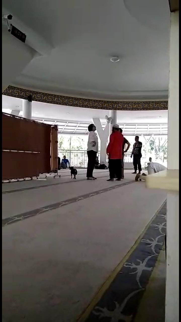 Anjing Wanita Lepas di Masjid, Ini Penjelasan Warga