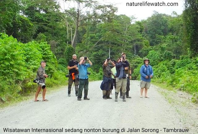birding in malagufuk