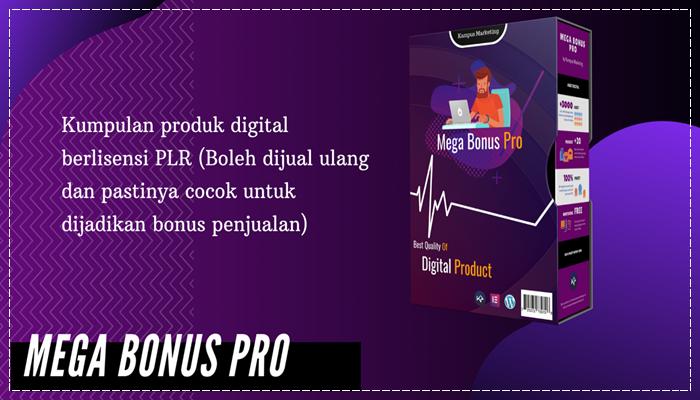 Mega Bonus Pro - PLR
