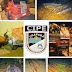 Polícia militar coíbe crime ambiental de extração ilegal e venda de madeira nativa em Iaçu