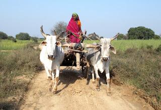 राष्ट्रीय महिला किसान दिवस