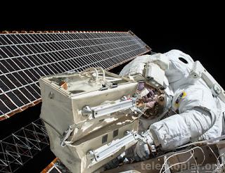 Astronot resmi