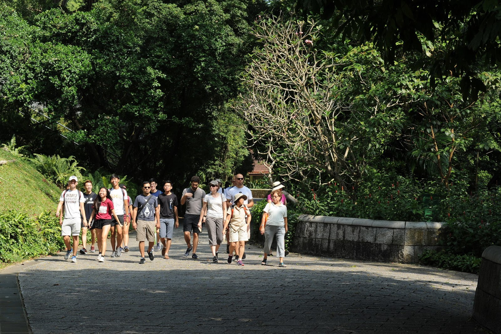 Special Guided Tour for Fort Canning Gardens