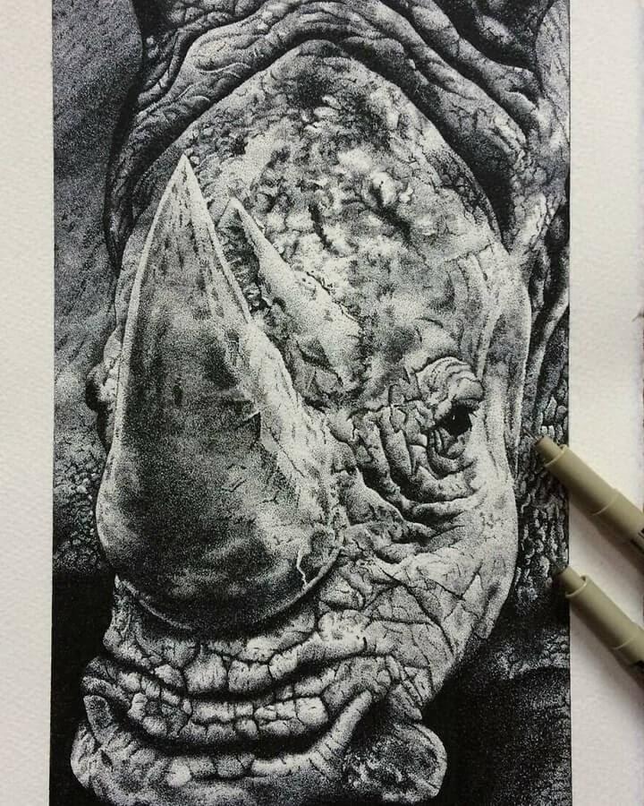 04-Rhino-Fred-Ughetto-www-designstack-co
