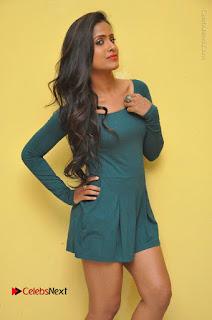 Telugu Actress Prasanthi Stills in Green Short Dress at Swachh Hyderabad Cricket Press Meet  0015.JPG