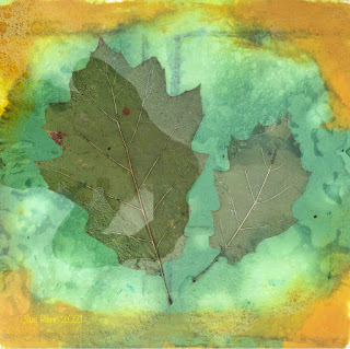 Wet cyanotype_Sue Reno_image 830