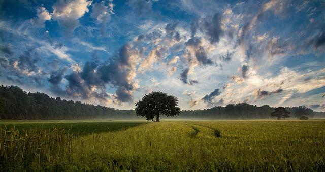 descripcion paisajes