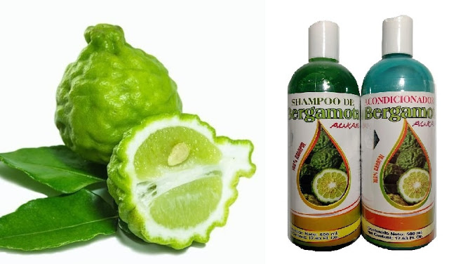 ¿Para qué sirve el shampoo de bergamota?