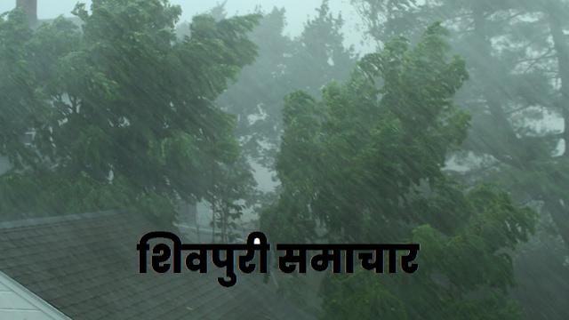 जिले में अब तक 253.1 मि.मी. औसत वर्षा दर्ज / SHIVPURI NEWS