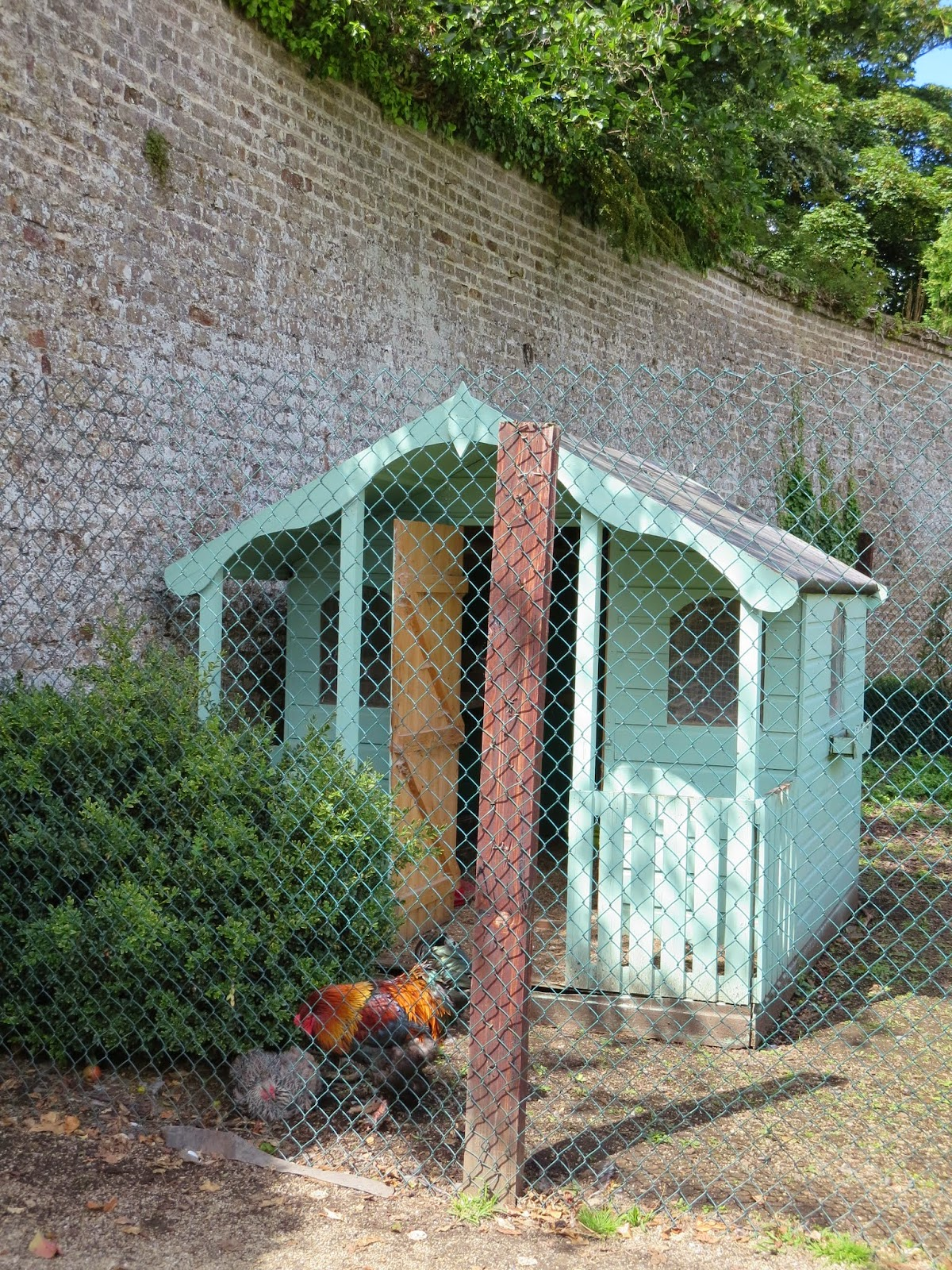 Pastel chicken coop and rooster in the walled garden at Marlay Park