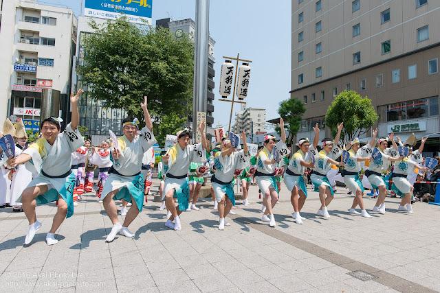 天狗連、熊本地震被災地救援募金チャリティ阿波踊り、男踊りの写真